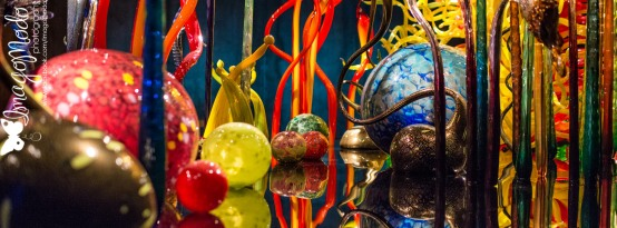 Chihuly Gallery - St. Petersburg